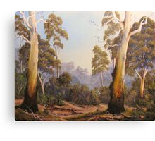 The Scent Of Gumtrees Canvas Print