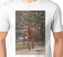 Nelson - NNEP Ottawa, ON Unisex T-Shirt