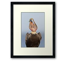 Bucket Mouth Framed Print