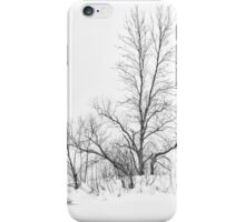 Winter's Purity iPhone Case/Skin