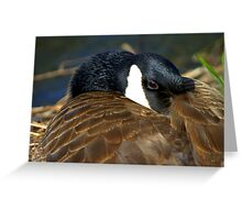 Guess who's watching you now?!!! Greeting Card