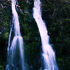 Road Side Waterfalls by NancyC