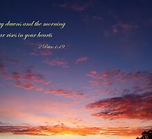 The day dawns by Jan Stead JEMproductions