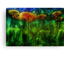 Underwater Lilies Canvas Print