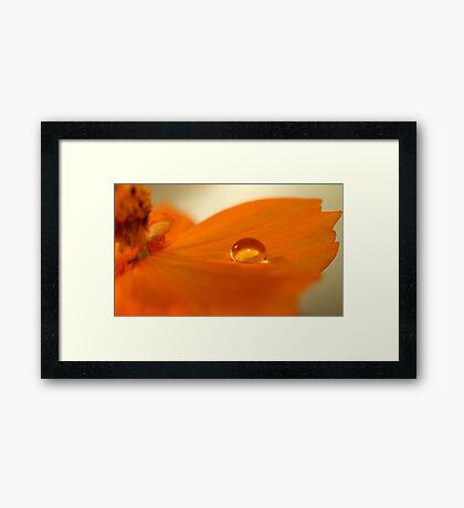 """Sunkissed"" Framed Print"