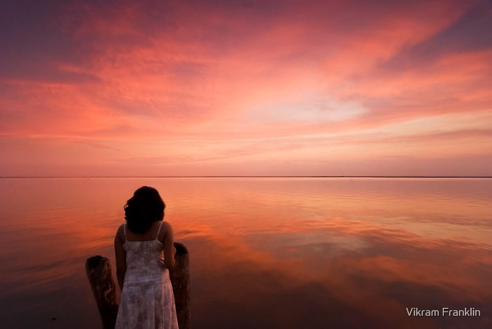 Quietude by Vikram Franklin