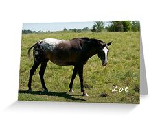 Zoe - NNEP Ottawa, ON Greeting Card