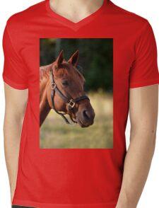 Presley - NNEP, Ottawa, ON Mens V-Neck T-Shirt