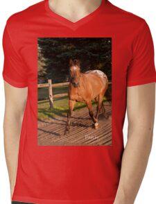 Patch - NNEP Ottawa, ON Mens V-Neck T-Shirt