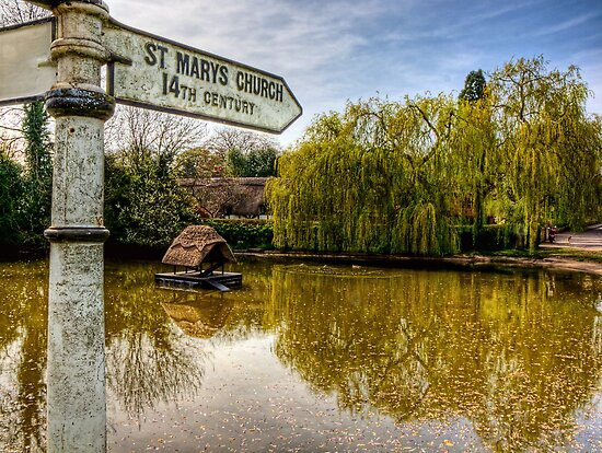 The Duckpond in the village of Crawley, near Winchester by NeilAlderney