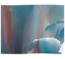 Tulip - blue Poster