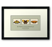 Butterfly Horizontal Collection 3 - Print Framed Print