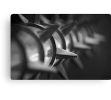 Black and White Spike Canvas Print