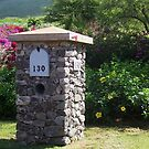 Mailbox on Maui by Marjorie Wallace