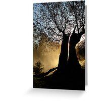Split tree Greeting Card
