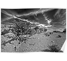 Ruin on Aztec Butte Poster