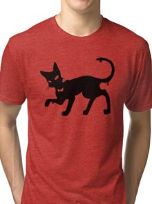 Angus the cat paint spot Tri-blend T-Shirt