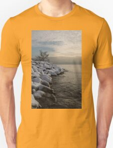 Clearing Snowstorm - Lake Ontario, Toronto, Canada T-Shirt