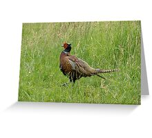 Archie - a very Pleasant Pheasant Greeting Card