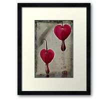 Love hurts Framed Print