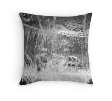 Lost in the Water Throw Pillow