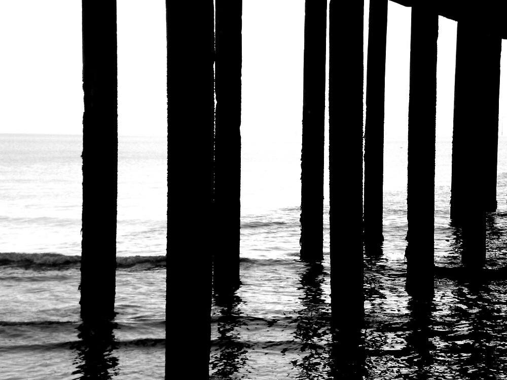 Sea Stilts by Josephine Pugh