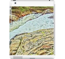 Roaring Fork River, Headwaters No. 10 iPad Case/Skin