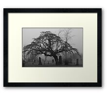 Foggy Resting Place Framed Print