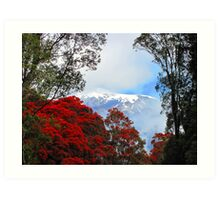 Red Blossoms and glaciers Art Print