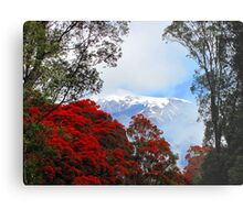 Red Blossoms and glaciers Metal Print