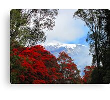 Red Blossoms and glaciers Canvas Print