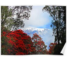 Red Blossoms and glaciers Poster