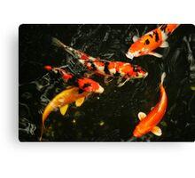 Fish, Tokyo Japan, 2010 Canvas Print