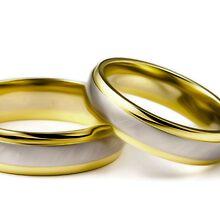 Wedding Rings by spookydooky