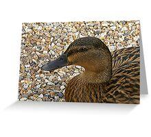 Quack! Greeting Card