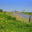 River *De Linde* by ienemien