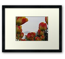 Swimming in the Sea of Your Colors Framed Print