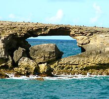 Laie Point by Sharon Holck