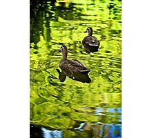 It's a green world Photographic Print