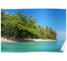 Tropical sandy shore with lush vegetation Poster