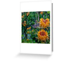 Overtly Orange - Longwood Gardens USA Greeting Card