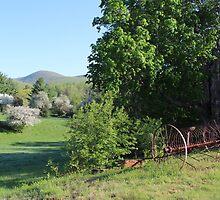 Paddock with Farming equipment by ChereeCheree