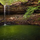 Rattlesnake Falls - Ozark National Forest - Arkansas by Scott Ward