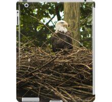 Bald Eagles iPad Case/Skin