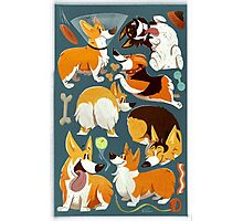 Corgi Collage! Photographic Print