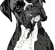 Black and White Boxer Art by Chandler Milillo