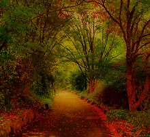 George's Pathway by KeepsakesPhotography Michael Rowley