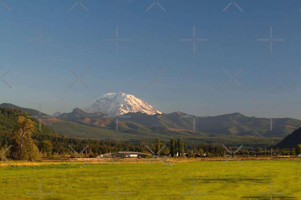 Mount Rainier with Rural Farm by Stacey Lynn Payne