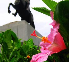 Pink Petals at the foot of Andrew Jackson by L.D. Bonner