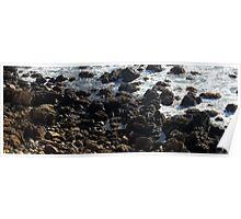 California Coastline 0461 Poster
